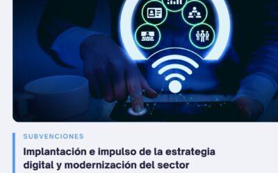 Subvención para la implantación e impulso de la estrategia digital del sector comercial y artesanal